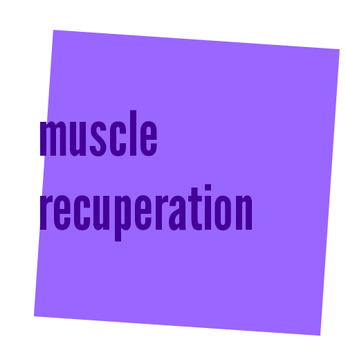 muscle recuperation