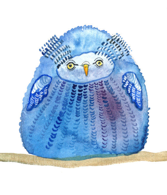 A Little Pudgy Blue Owl - Print