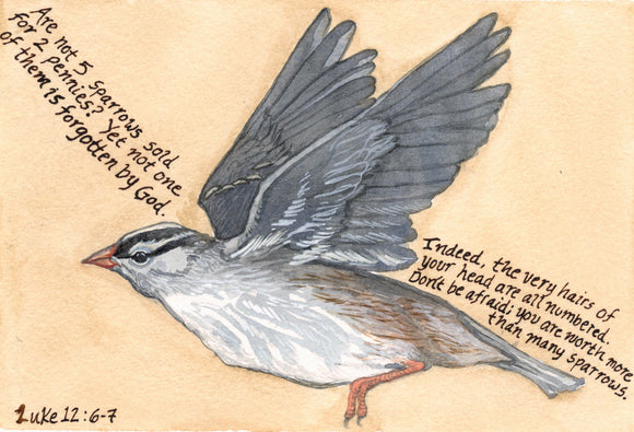 Are not five sparrows sold for two pennies? - Print