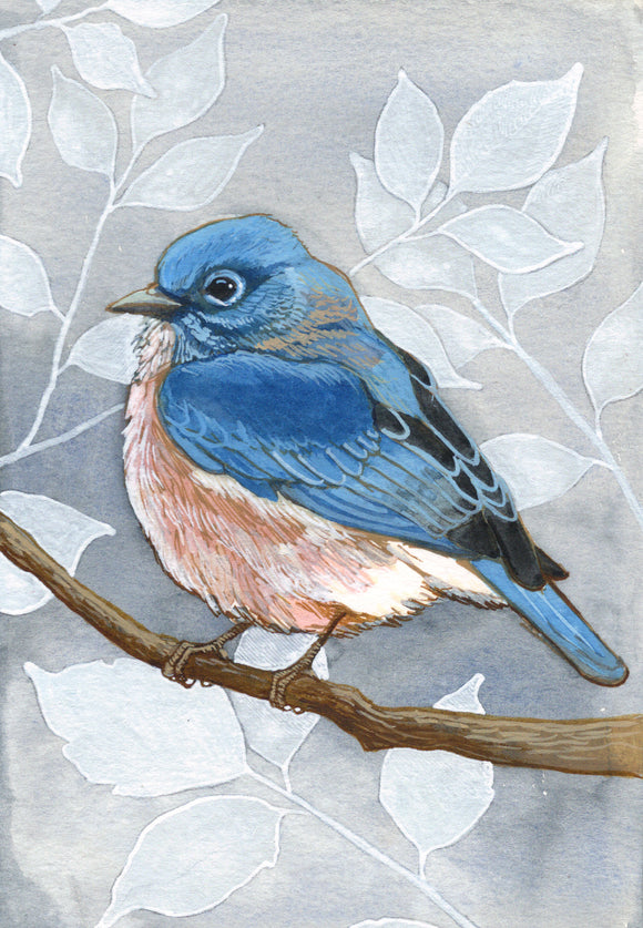Blue Bird - Art Print