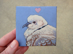"Ring-Necked Dove Love - An original acrylic painting on a miniature canvas 3""x3"""