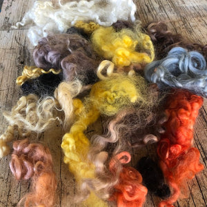 Hair tones ~ hand dyed English Leicester Fleece