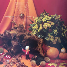 Load image into Gallery viewer, Nature Corner ~ Celebrating the Year's Cycle with Seasonal Tableaux by M van Leeuwen + J Moeskops