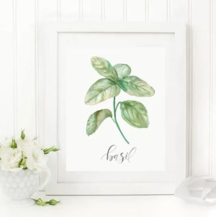 "White 8 x 10 textured art print with a watercolor basil plant printed in the middle with ""basil"" written underneath in script"
