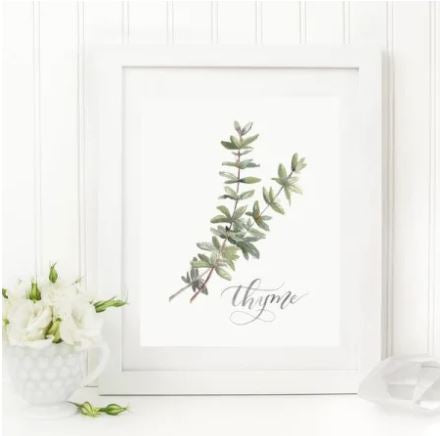 "White 8 x 10 textured print with two watercolor strands of thyme with ""thyme"" written in a script underneath"