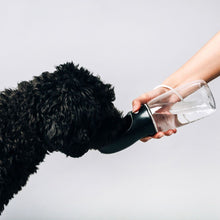 Load image into Gallery viewer, Original Black Thirsty Dog Bottle