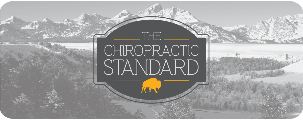 Chiropractic Standard - Outerwear