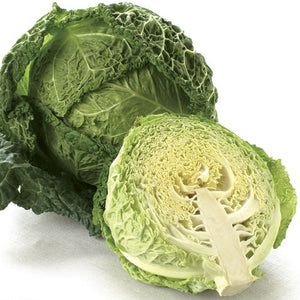Cabbage - Savoy - Retail