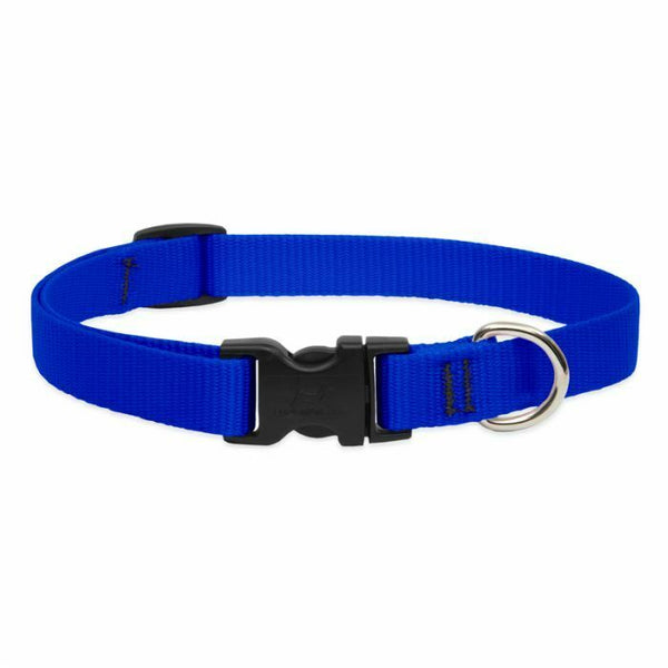 Lupine Basics Dog Collars for XX-Small to X-Large Dogs - rovers-kit