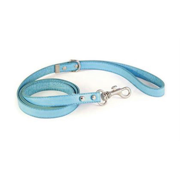 Coloured Leather Dog Lead - rovers-kit