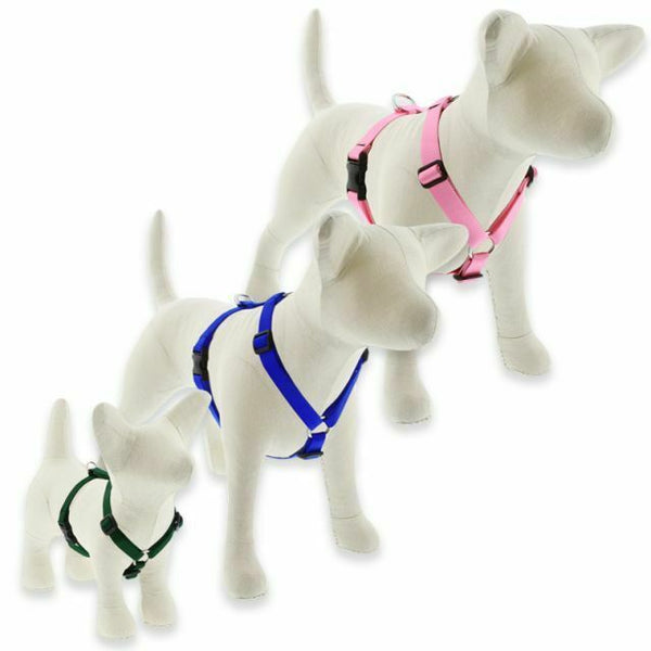Lupine Basics Roman Harnesses for XX-Small to X-Large Dogs - rovers-kit