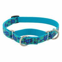 Lupine Originals Dog Collars for Large Dogs - rovers-kit