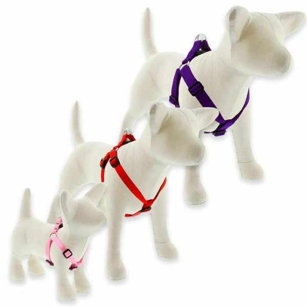 Lupine Basics Step-In Harnesses for XX- Small to X-Large Dogs - rovers-kit