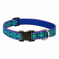 Lupine Originals Dog Collars for Small Dogs - rovers-kit