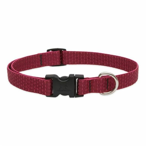 Lupine ECO Recycled Dog Collars for X-Small to X-Large Dogs - rovers-kit