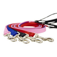 Lupine Basics Padded Handle Dog Leads