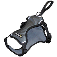 Car Safety Dog Harnesses - rovers-kit