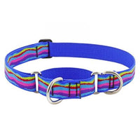 Lupine Originals Dog Collars for Medium to Large Dogs