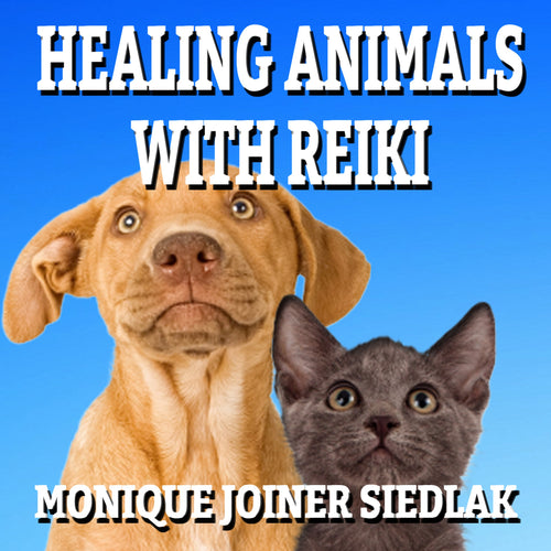 Healing Animals with Reiki
