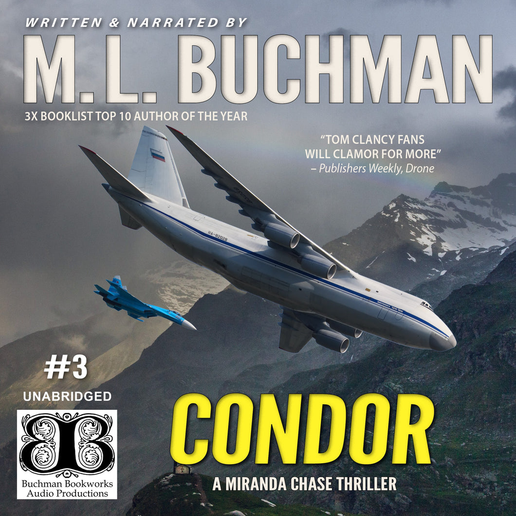 Condor: an NTSB / military technothriller