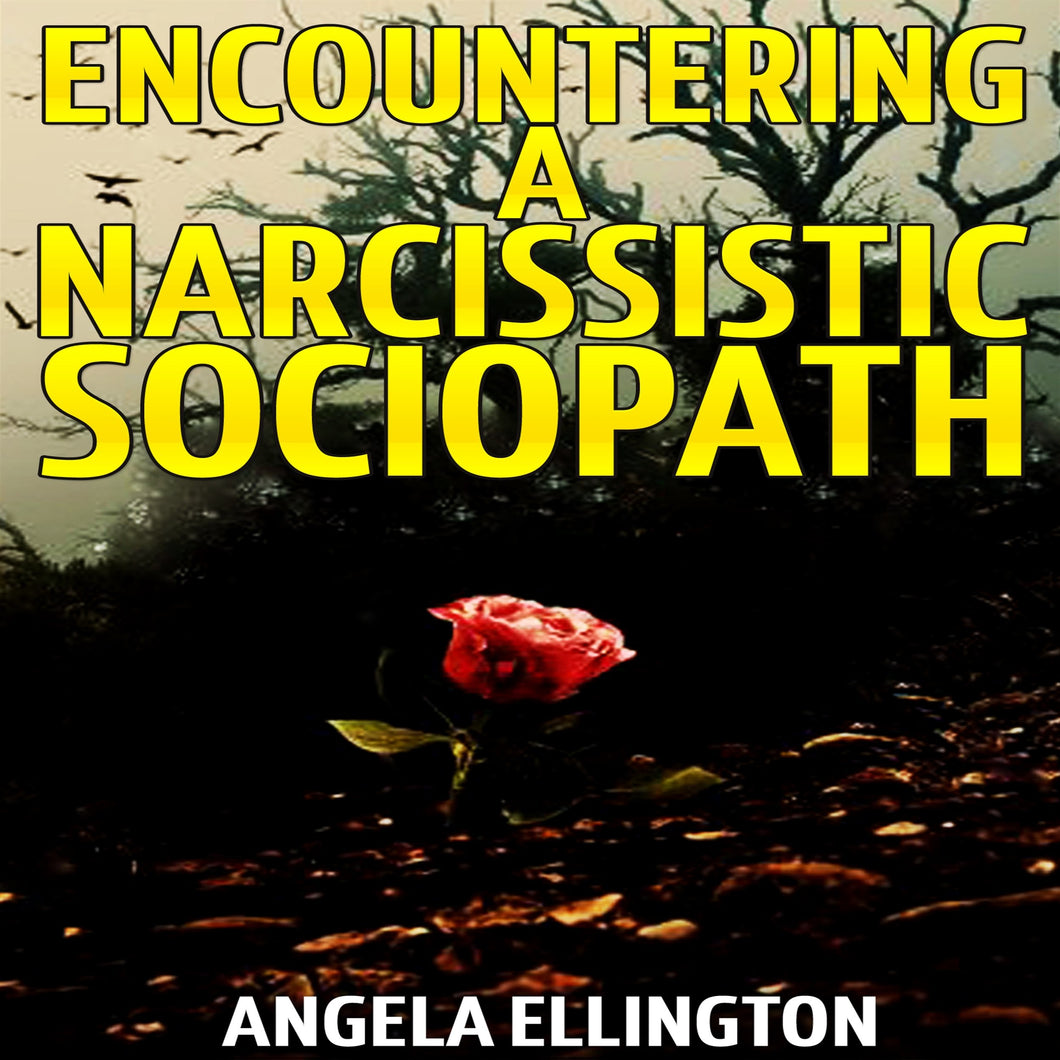 Encountering a Narcissistic Sociopath