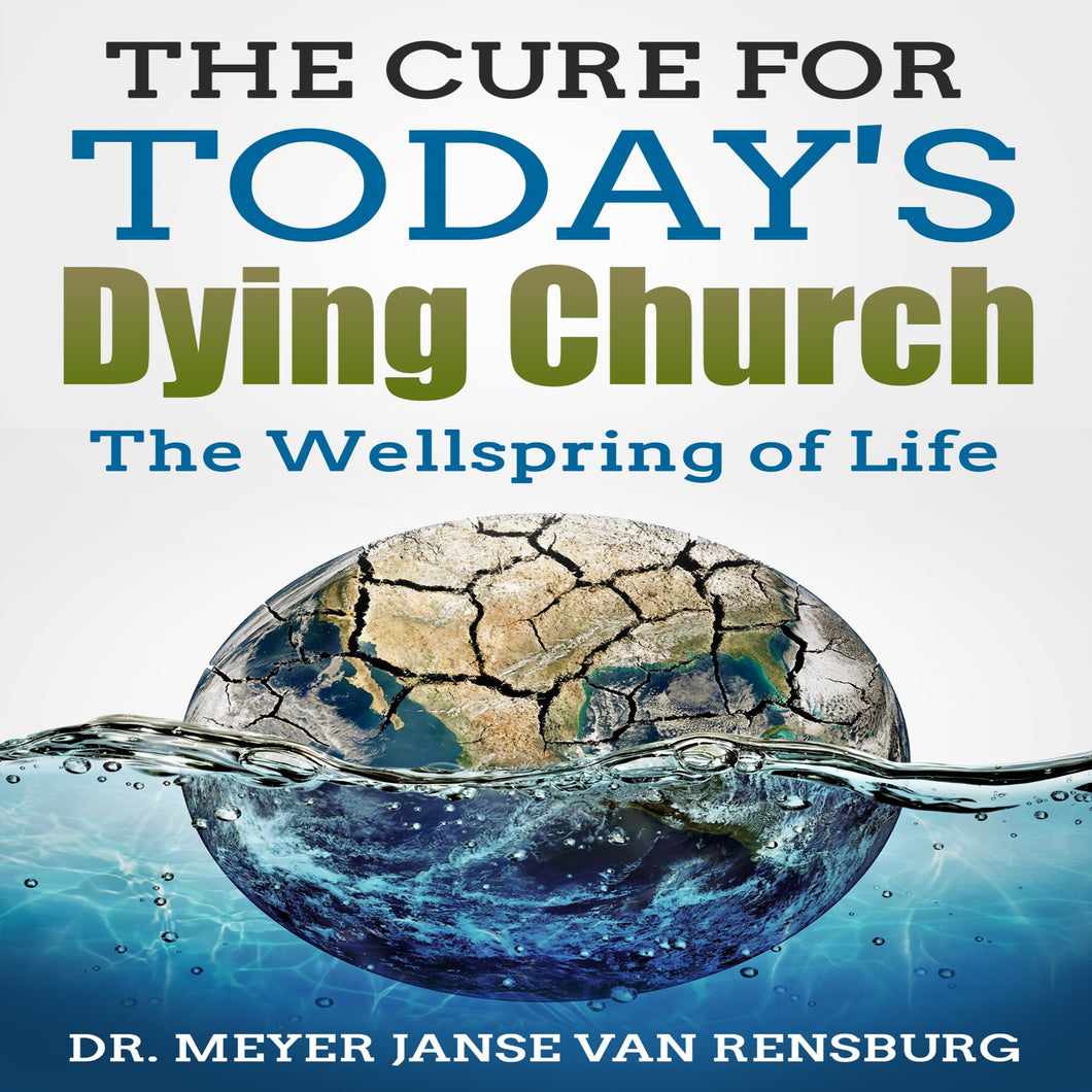 The Cure for Today's Dying Church: The Wellspring of Life