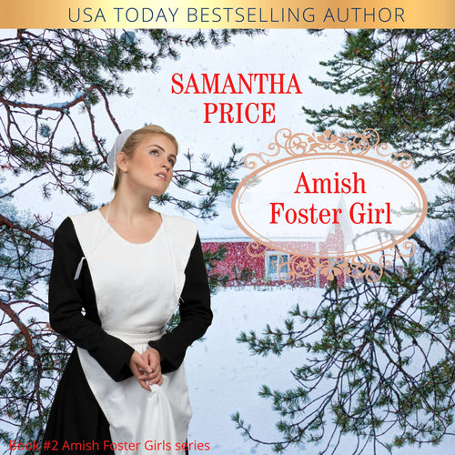 Amish Foster Girl: Amish Romance