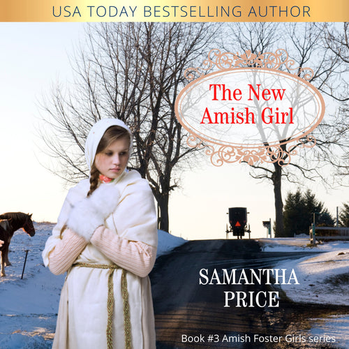 The New Amish Girl: Amish Romance