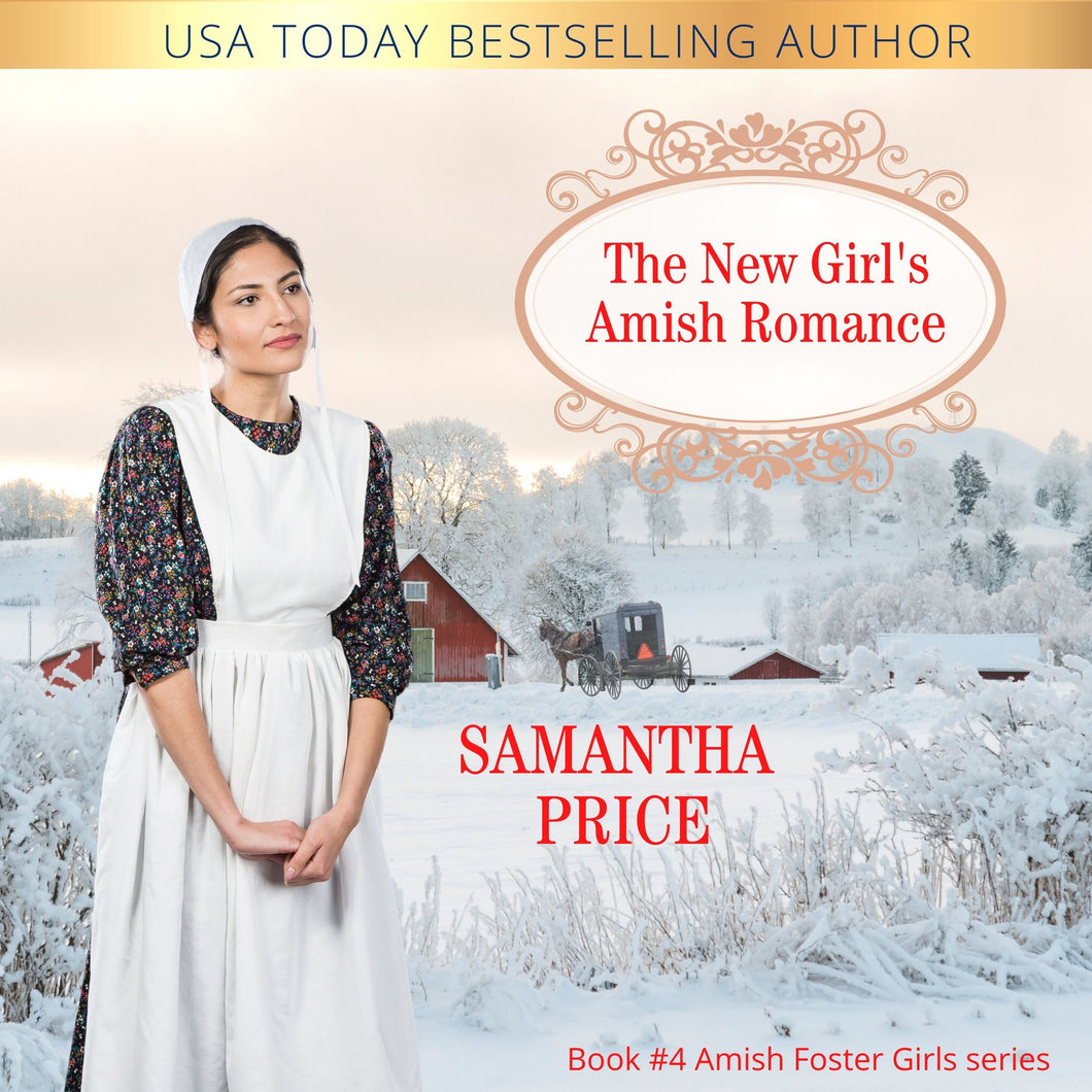 The New Girl's Amish Romance: Amish Romance