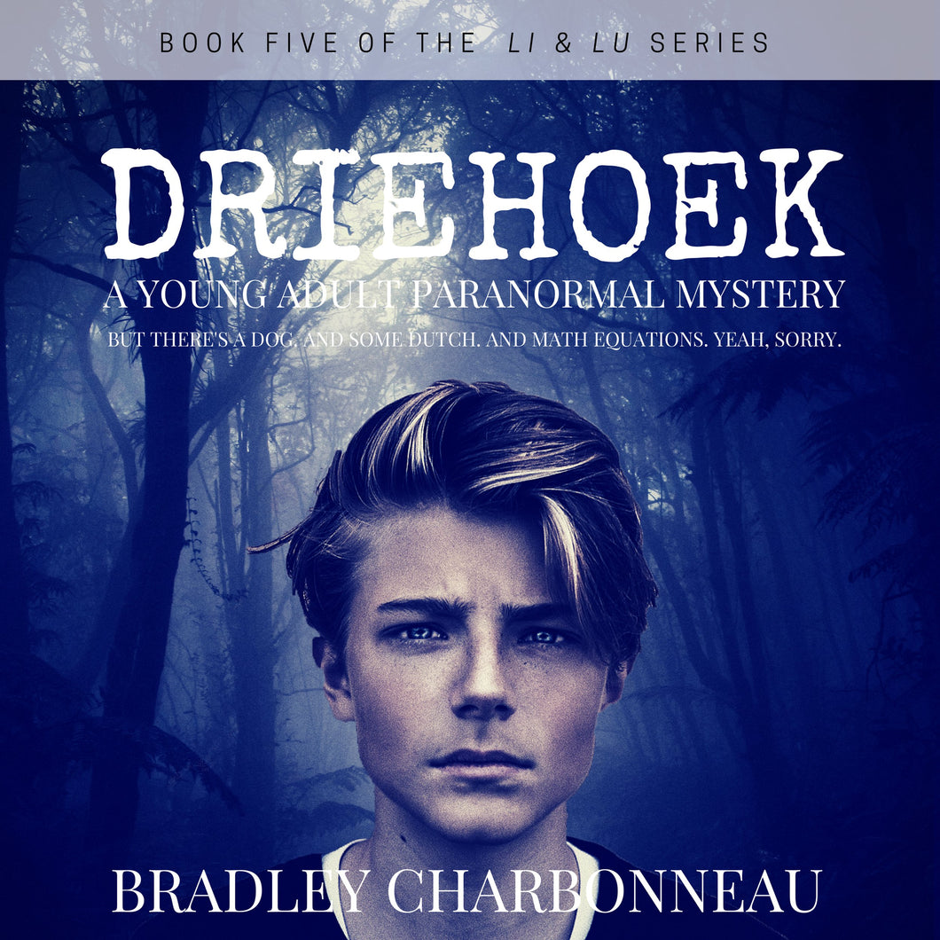 Driehoek: A Young Adult Paranormal Mystery