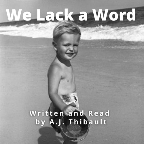 We Lack A Word: A Collection Of Rhythmic Prose And Poetry