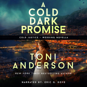 A Cold Dark Promise: FBI Romantic Suspense