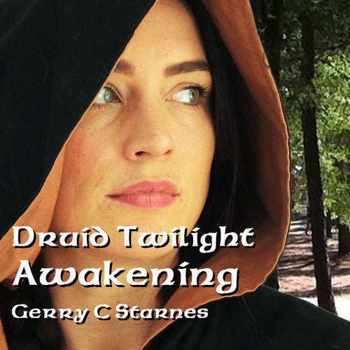 Druid Twilight: Awakening