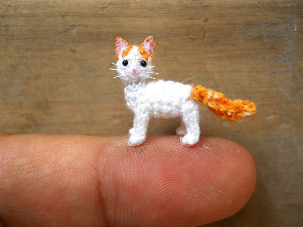 Miniature Turkish Van Cat