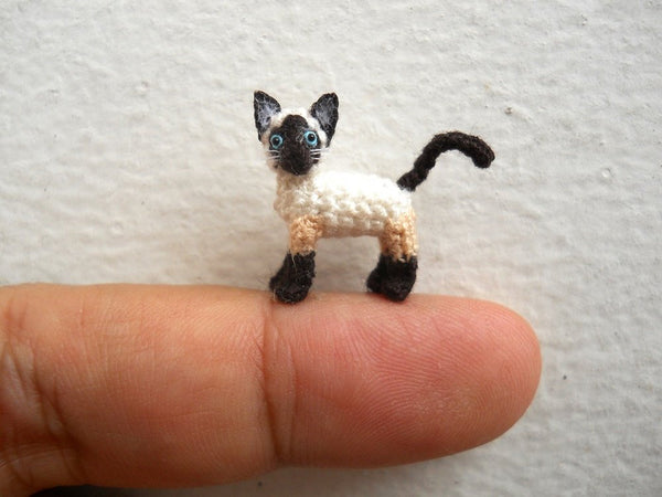 Miniature Siamese Cat