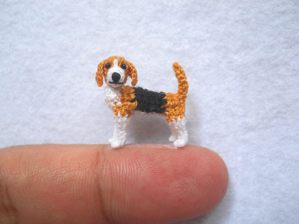 Miniature Beagle