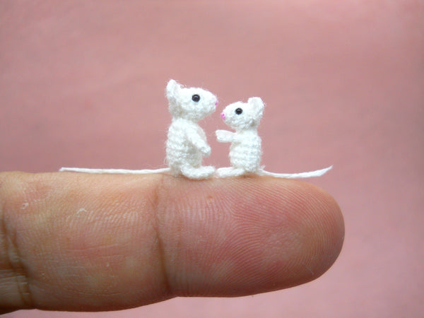 Two Brother White Mice