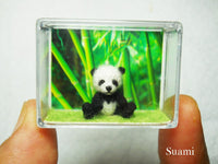 Miniature Panda Bear 0.8 inch
