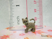 Micro Miniature Grey Cat Kitten