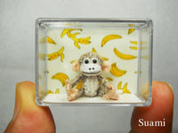 Lovely Tiny Monkey