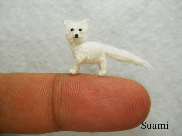 Miniature Arctic Fox