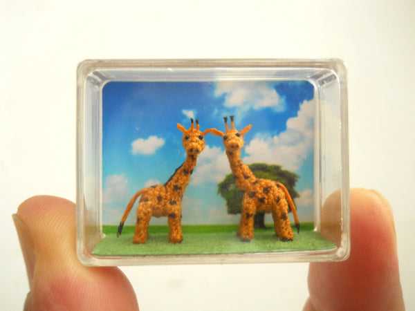 Miniature Giraffe Couple
