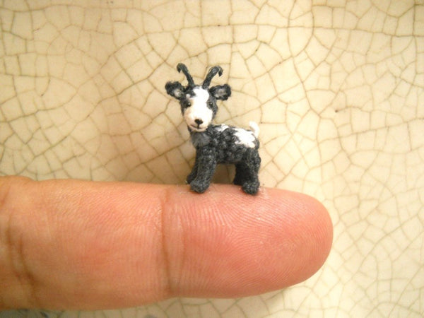 1/2 Inch Mini Goat, White Grey