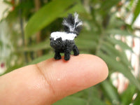 Miniature Skunk