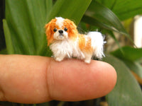 Miniature Japanese Chin