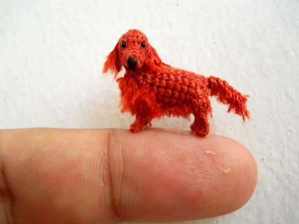 Miniature Red Setter
