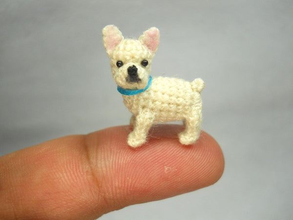 Mini White French Bulldog