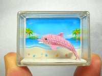 Miniature Pink Dolphin