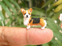 Mini Pembroke Welsh Corgi