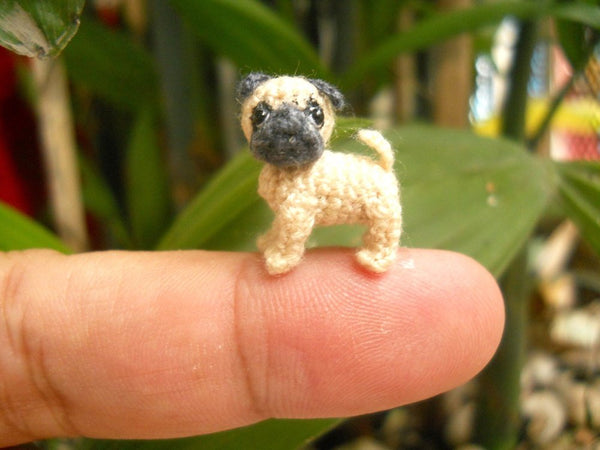 Micro Miniature Tan Pug Dog